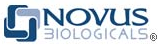 Novus_1